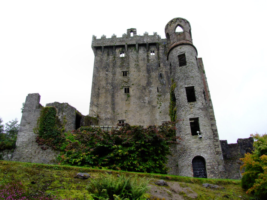 Cork kissing the blarney stone for The blarney